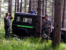 corpo-forestale-bosco