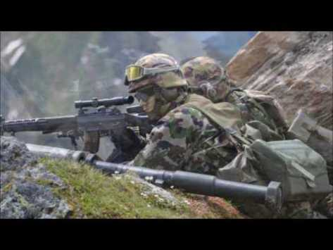 MilitariSvizzeri
