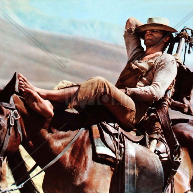 TErenceHill